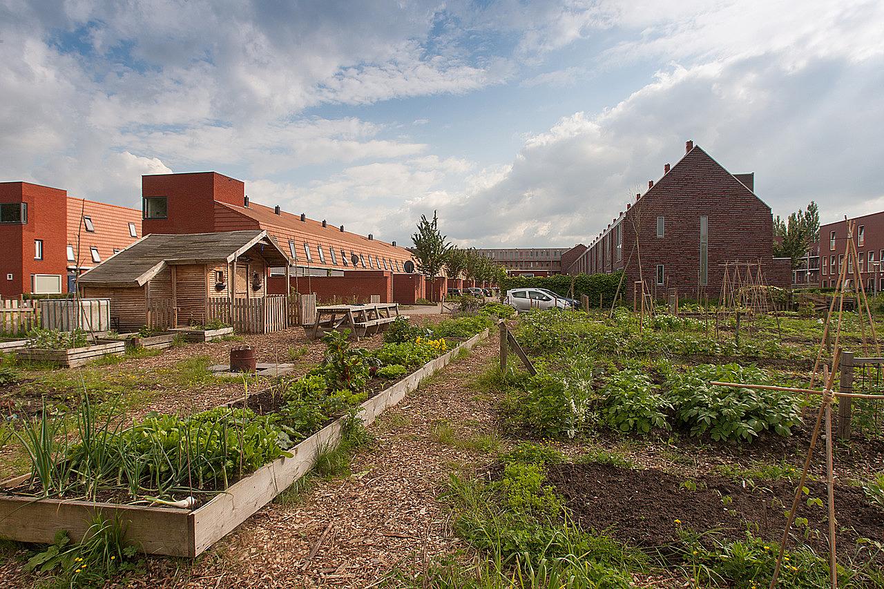 huis kopen Groningen